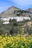 Побеленный городок в Андалусии, Испании Стоковая Фотография