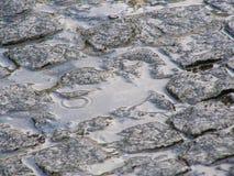 побитый дождь путя Стоковое фото RF