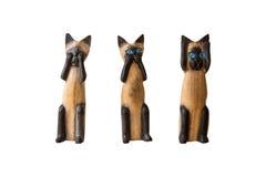 Побрякушка кота Стоковые Фотографии RF