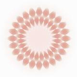 Побледнейте - пинк - cream декоративный круговой орнамент Иллюстрация вектора