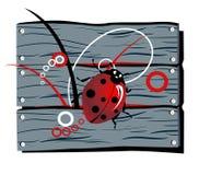 повелительница загородки жука Бесплатная Иллюстрация