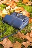 повелительница лежа s сумки травы малая Стоковые Фотографии RF