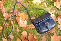 повелительница лежа s сумки травы малая Стоковые Изображения RF