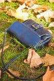 повелительница лежа s сумки травы малая Стоковое Фото