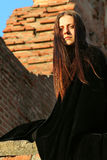 повелительница средневековая Стоковые Изображения