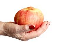 повелительница удерживания руки яблока пожилая Стоковая Фотография RF