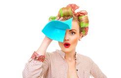 Повелительница чистки Стоковые Фото