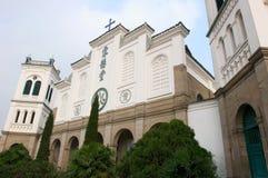 повелительница lourdes церков наш Стоковые Фото