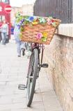 повелительница s bike Стоковые Изображения