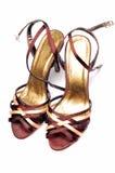 повелительницы обуви стоковое фото rf