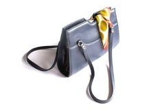 повелительницы сумки стоковое фото rf
