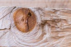 поверхностная древесина текстуры Стоковое Изображение