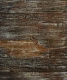 поверхностная древесина Стоковое фото RF