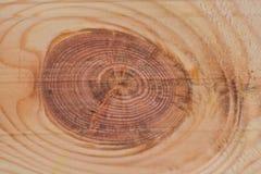 поверхностная древесина стоковые фото