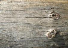 поверхностная древесина Стоковое Изображение RF