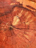поверхностное деревянное Стоковая Фотография RF