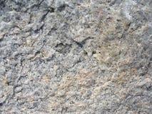 поверхность валуна Стоковая Фотография