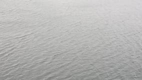 Поверхность воды с отбрасывая предпосылкой волн сток-видео