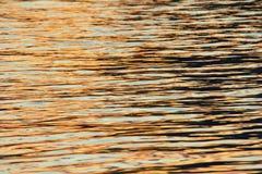Поверхность воды в заходе солнца Стоковое Изображение