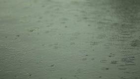 Поверхность воды с дождевыми каплями видеоматериал