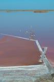 Безжизненное озеро Стоковые Фото