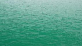 Поверхность зеленой гавани от верхней части акции видеоматериалы