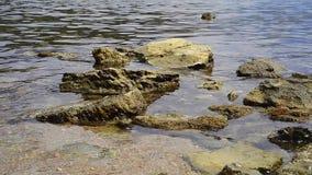 Поверхность и утесы Адриатического моря акции видеоматериалы