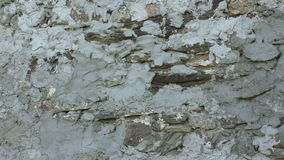 Поверхность каменной стены с цементом акции видеоматериалы
