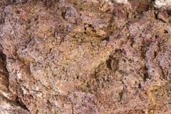 Поверхность камня моря Стоковая Фотография RF
