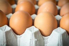 Поверхность крупного плана яичек в бумажном пакете с задней частью softfocus Стоковое Фото