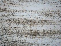 поверхность металла ржавая Стоковое Изображение RF