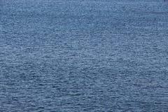 Поверхность моря, поистине равномерная предпосылка Стоковая Фотография