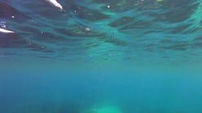 Поверхность моря снизу видеоматериал