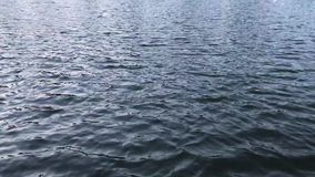 Поверхность озера на природе акции видеоматериалы