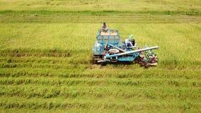 Поверхность отснятого видеоматериала отслеживая в ферму риса на жатке видеоматериал