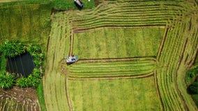 Поверхность отснятого видеоматериала отслеживая в ферму риса на жатке акции видеоматериалы