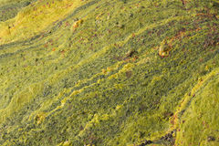 Поверхность покрашенного камня Брызгает коричневого цвета Защитная картина Стоковые Изображения RF