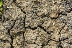 Поверхность почвы Стоковое Фото