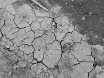 Поверхность сухого треснутого конца-вверх земли Стоковое Изображение