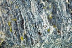 поверхность утеса лишайника гранита Стоковое Фото