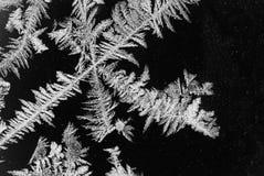 Поверхность цветка льда Стоковые Фото