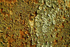 поверхность шлюпки старая Стоковые Фотографии RF