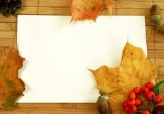 повод пустой карточки осени Стоковая Фотография