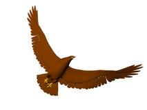 поворачивать летания орла Стоковые Фотографии RF