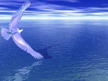 поворачивать серебра орла Стоковые Фото