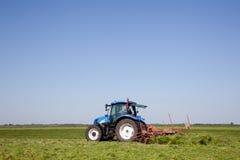Поворачивая трава для сушить Стоковые Фото