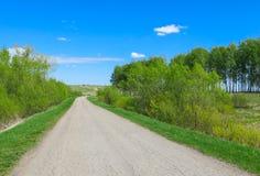 Повороты дороги, летний день Стоковые Фото