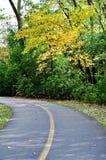 Поворот улицы в парке Стоковое Изображение