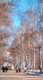 Повод весны в городе Стоковое Фото