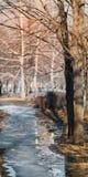 Повод весны в городе Стоковая Фотография RF